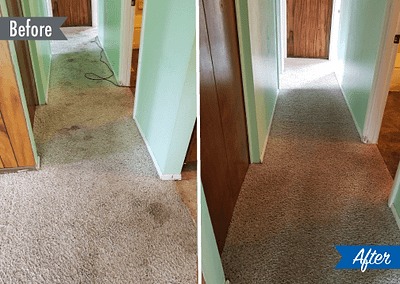 carpet cleaning detroit mi