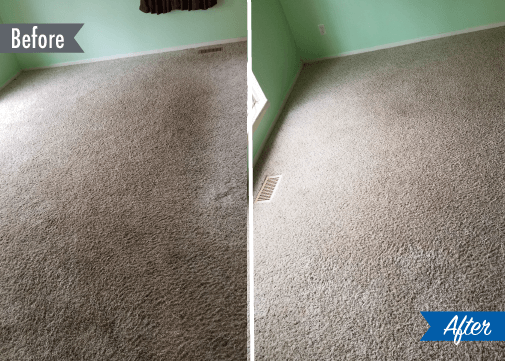 carpet cleaning before and after detroit