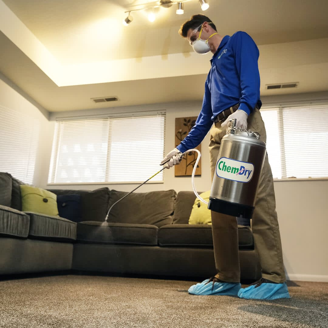 sanitize carpets
