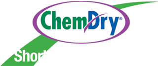 Short stop chem dry carpet cleaning